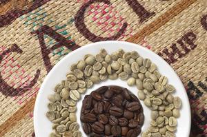 Caffe del Doge -  Colombia Colombia Supremo 18 Bachu é 100% Arabica